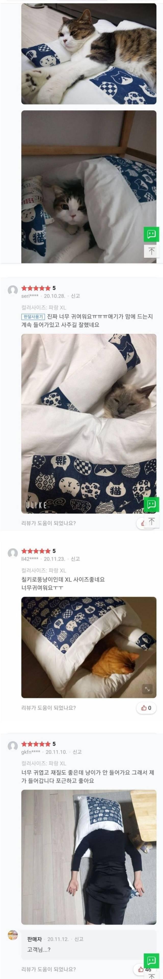 판매자가 당황한 고양이 이불 후기.jpg   인스티즈