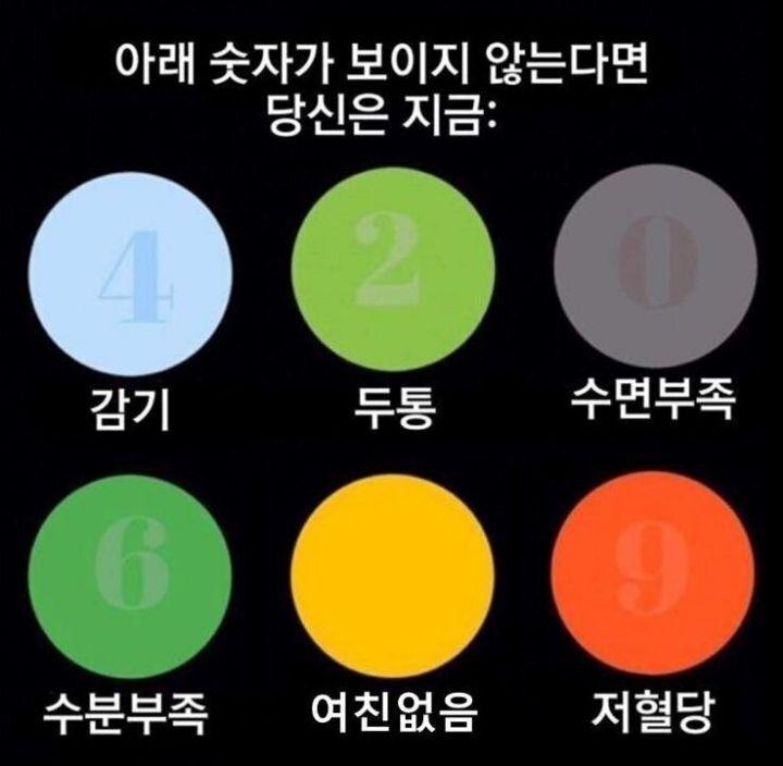 색깔로 알아보는 자가진단 테스트 | 인스티즈