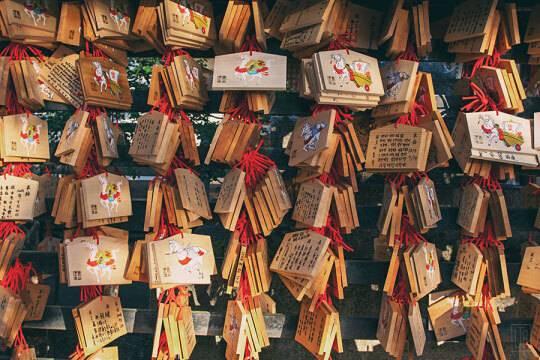 일본 교토의 풍경 | 인스티즈