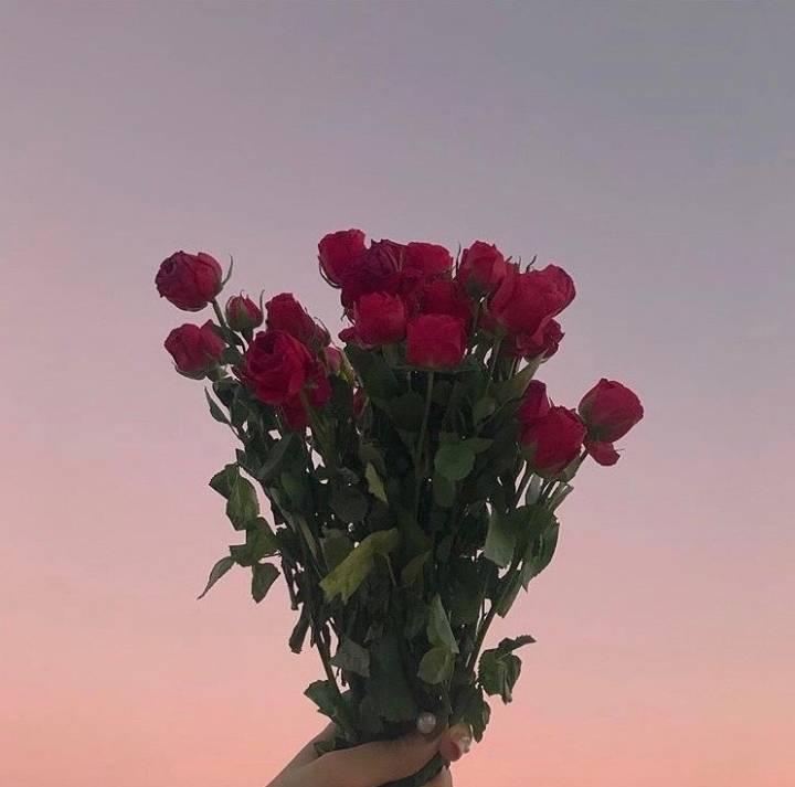 그대가 장미꽃에게서 오월을 훔친 것 같다 | 인스티즈