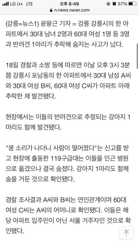 """강릉 아파트서 30대 연인·60대 모친·반려견 추락사""""극단 선택 추정""""(종합)   인스티즈"""