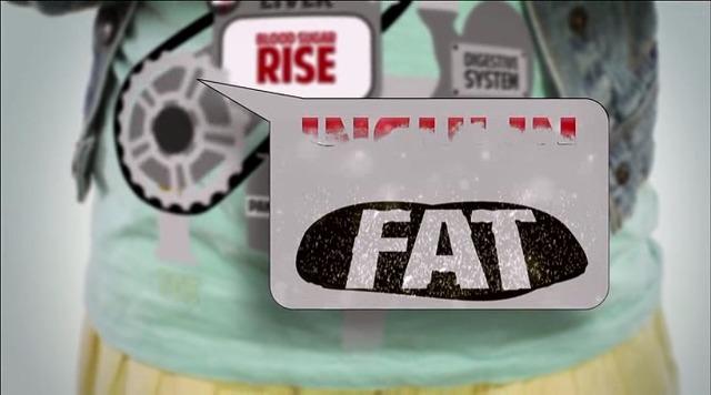 살을 빼고 싶다면? 적게 먹고 많이 운동하라 는 틀렸다! 고 말해주는 다큐멘터리 | 인스티즈