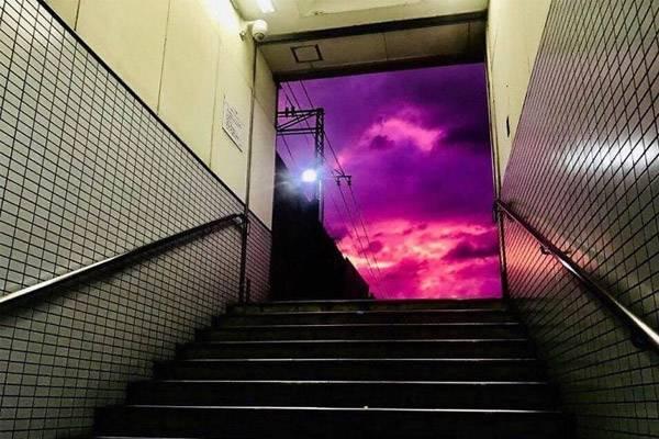 일본에서 찍힌 보라색 하늘의 정체.jpg   인스티즈