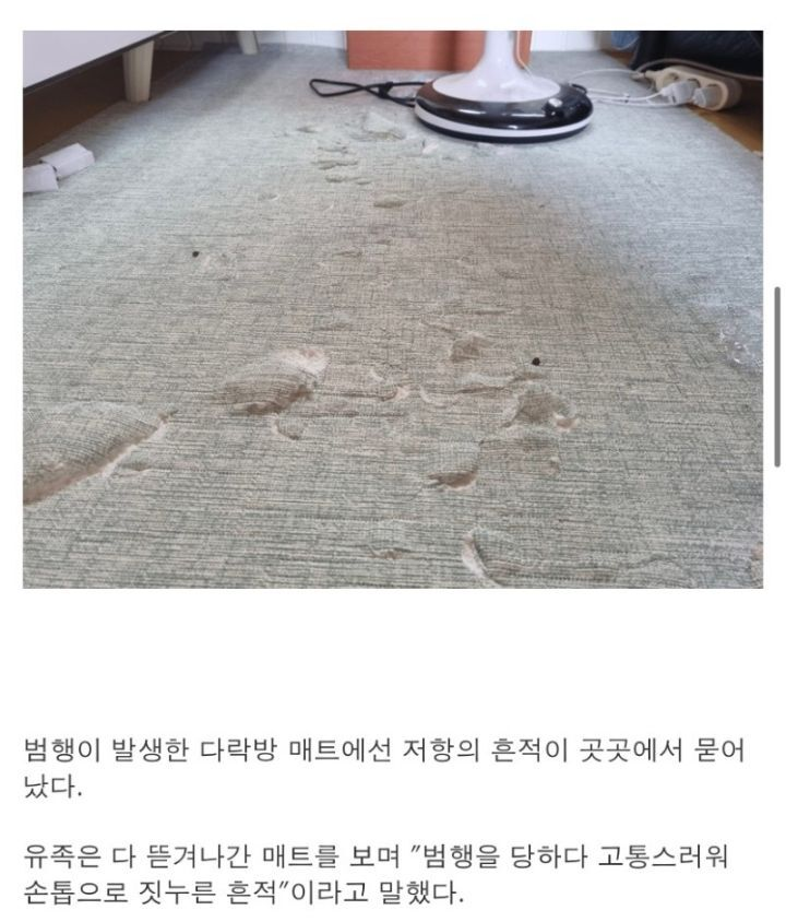 유족이 동의하고 공개한 제주 중학생 피살 사건 현장   인스티즈