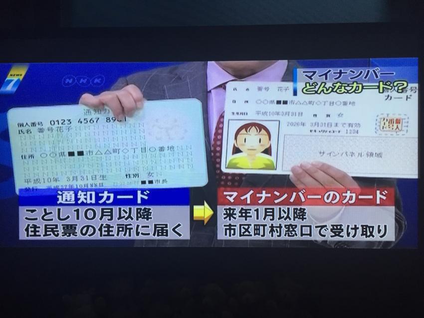 일본 주민등록번호 도입   인스티즈