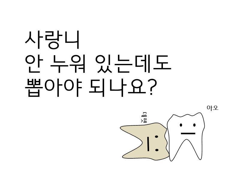 안녕하세오 치과의사에오 (3) 사랑니   인스티즈