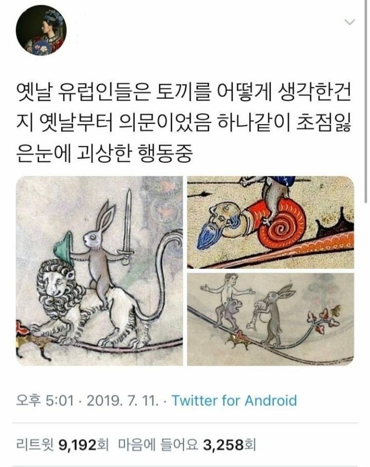 아이돌로 보는 한국 토끼와 외국 토끼의 차이 (feat.세븐틴) | 인스티즈